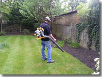 camberley gardener working